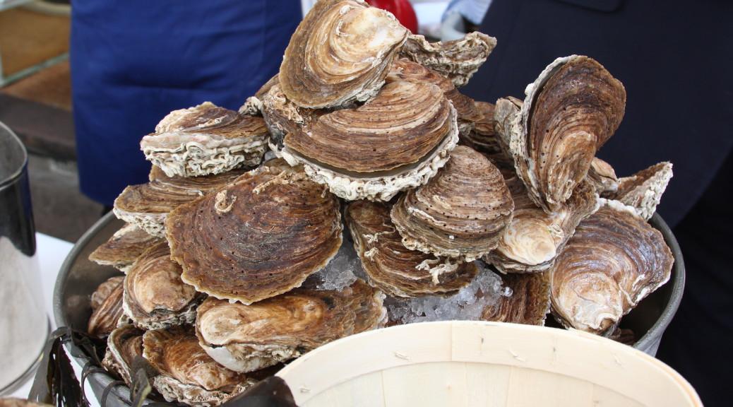 New oyster season
