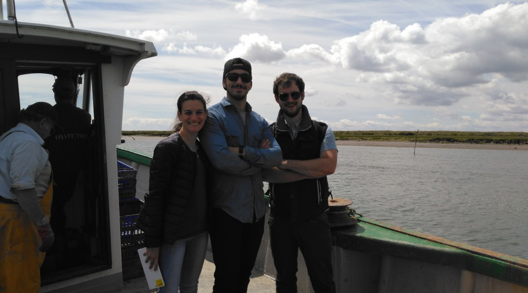 Staff team out on the boat at West Mersea Island