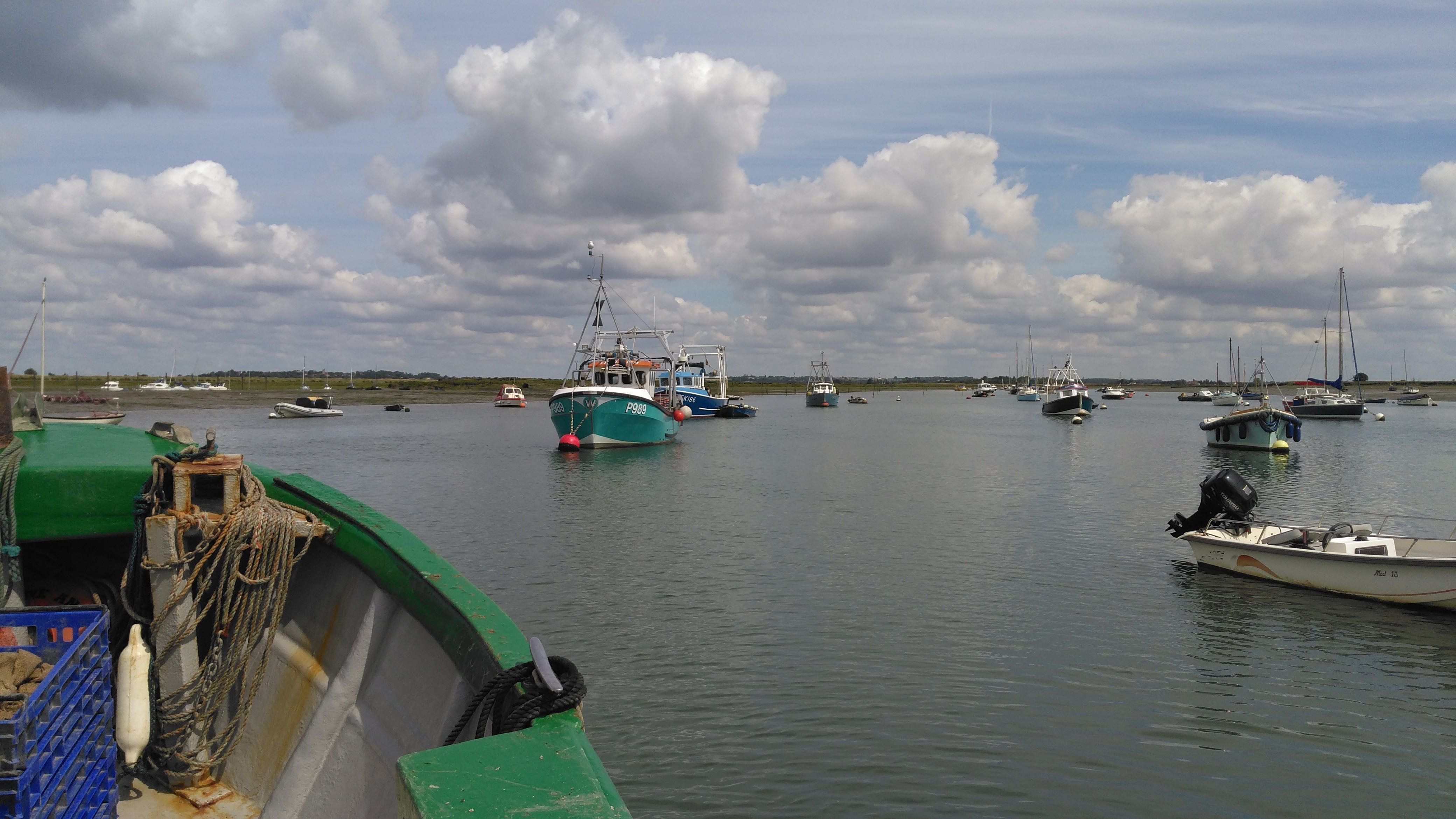Oyster blog 1